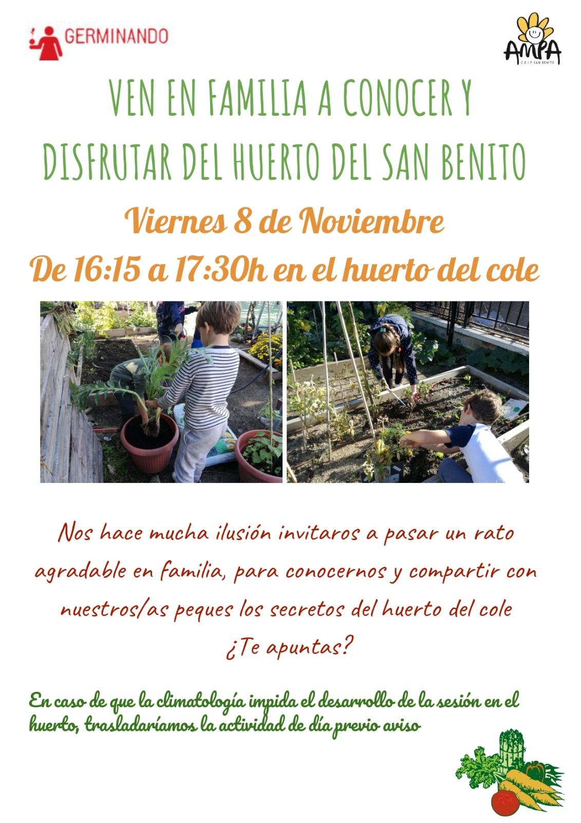 Viernes en el huerto del colegio San Benito